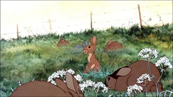 Kaninchen beim silflay in Sandleford (Film)