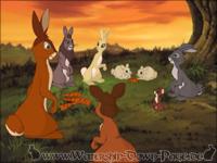 Die Kaninchen genießen ihr flayrah von der Farm