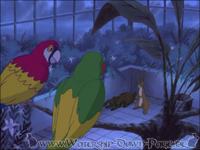 """Die Papageien erzählen Hazel von dem """"gleitenden Ding"""""""