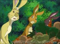 Die Kaninchen aus Cowslips Gehege überlegen wie sie flüchten können