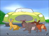 Die Kaninchen können Hickory von der Verkehrsinsel retten, in dem sie ein Auto zum Anhalten zwingen